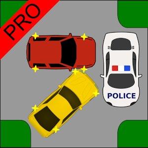 Driver Test Crossroads Pro