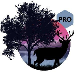 Amazing Land Pro