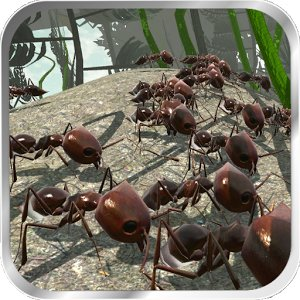 Ant Simulation 3D Full
