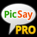 PicSay Pro – Photo Editor